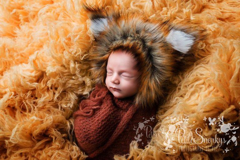Mignon comme un petit renard - Petite Snorkys Photography